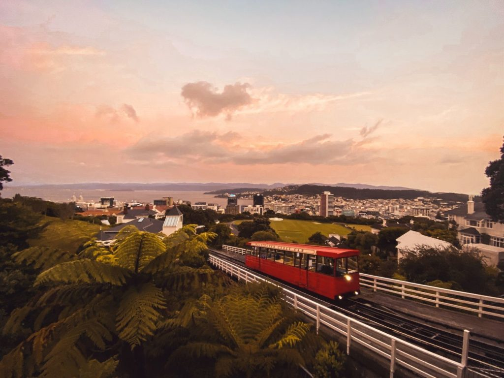 Blick auf Wellington in Neuseeland