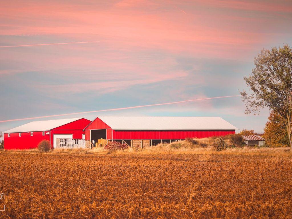 Work & Travel Farm in Kanada