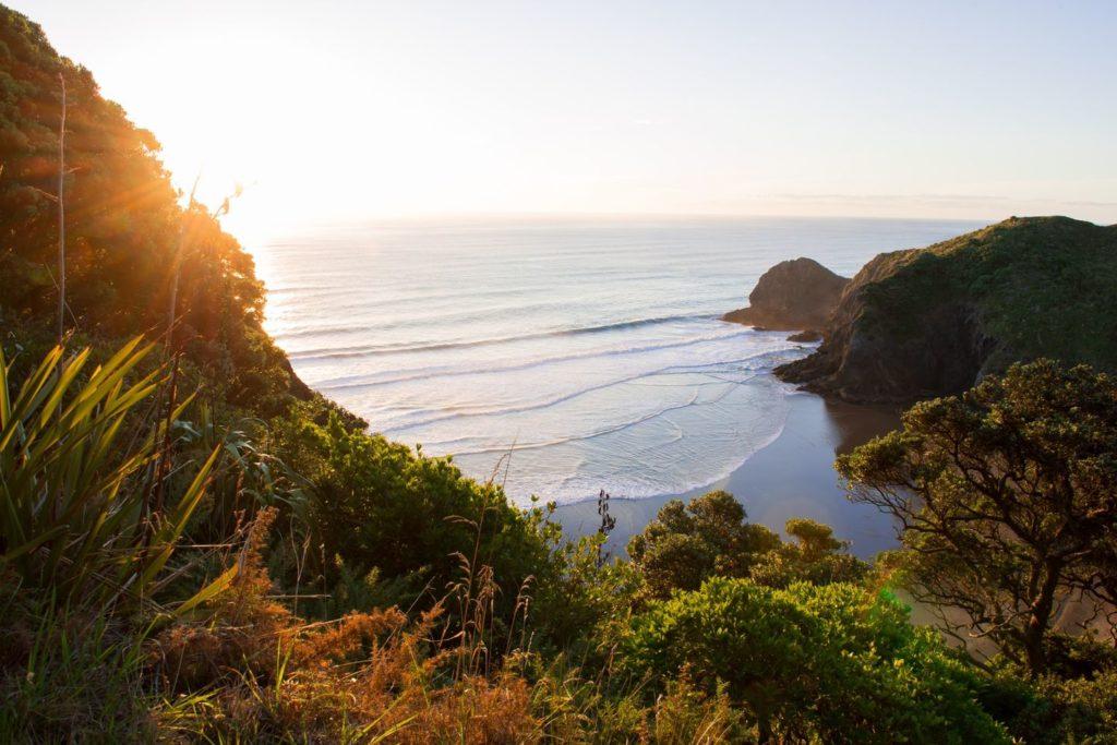 Meeresbucht bei Work & Travel Neuseeland