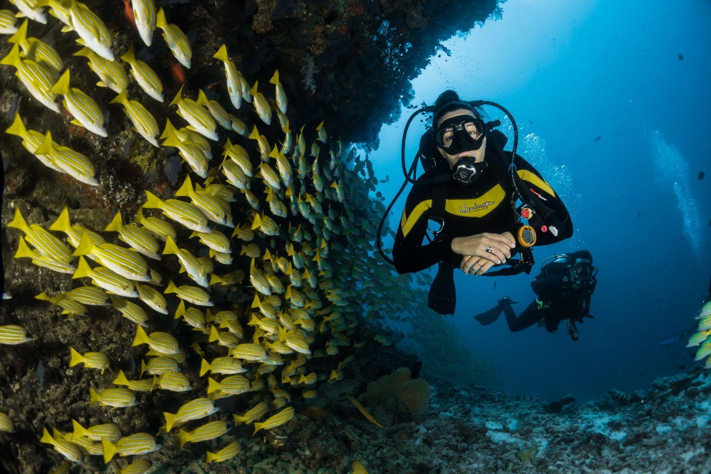 Taucher vor der Küste Australiens